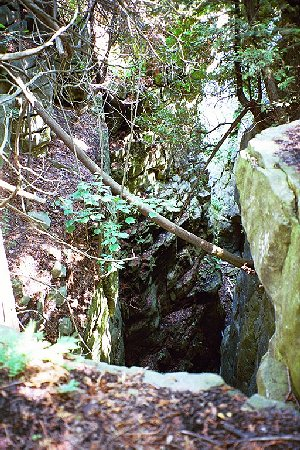 One of many deep fissures along the escarpment edge